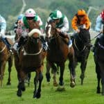 The Best Horse Racing Betting Sites Game